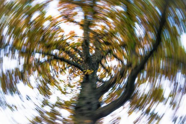 Vertigo could signify underlying psychogenic disorders. Photo: iStock