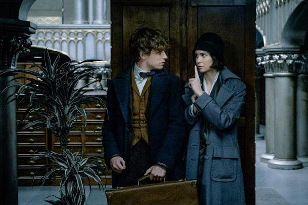 For Hollywood fans, fantasy film 'Fantastic Beasts and Where to Find Them', a spin-off of the Harry Potter series, comes to India this week.