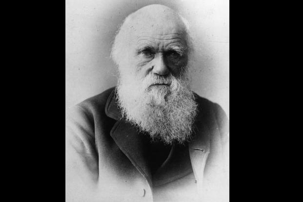 Buy research papers online cheap charles darwin