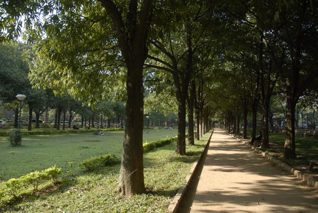 Bengaluru's Cubbon Park was established in 1870. Photo: Hemant Mishra/Mint