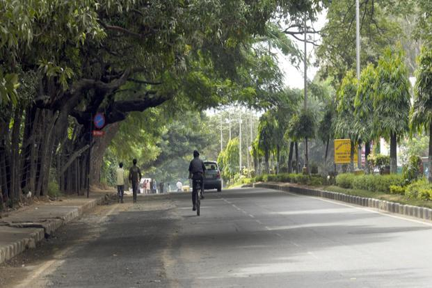 The study said the relative quantity of the green canopy may serve as an indicator of evaporative cooling from leaves and rainfall interception. Photo: Mint