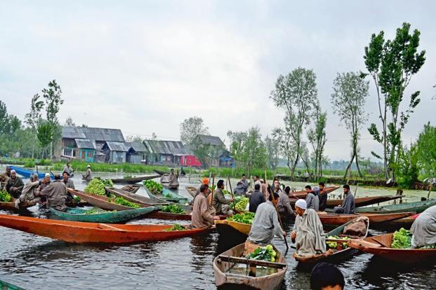 Floating vegetable markets on the Dal Lake in Srinagar. Photographs courtesy Syed Shehriyar