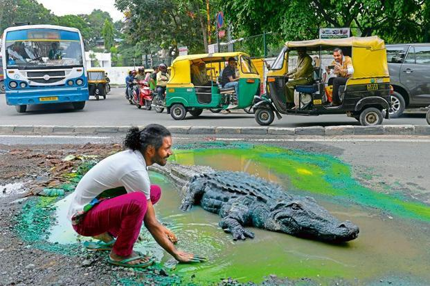 Artist Baadal Nanjundaswamy (left) transform this water-logged pothole at Bengaluru's busy Sultanpalya traffic junction into a green pond with a fibre crocodile, sourced overnight from a fellow artist and positioned in a crater that had been an eyesore for three months, which also got him global fame when it went viral. AFP