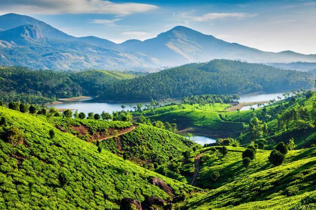 Kerala govt in a spot as bureaucrat bulldozes encroachments in Munnar hills