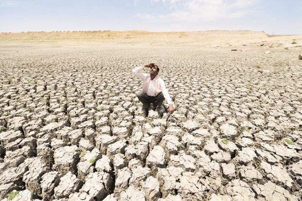 Both Tamil Nadu and Karnataka, among other states across the country, have been suffering from deficient rainfall resulting in acute drinking water shortage and large scale crop losses. Photo: Ramesh Pathania/Mint