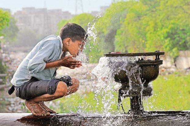Freshwater use could be reduced by up to 30% by lowering consumption of wheat, dairy and poultry in favour of fruits and vegetables. Photo: Hindustan Times