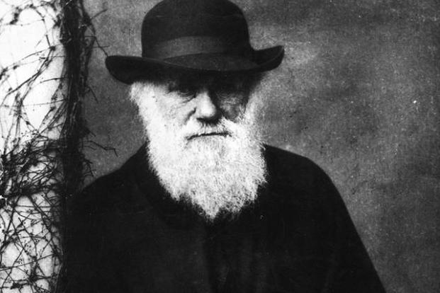 Charles Darwin. Photo: Getty Images.