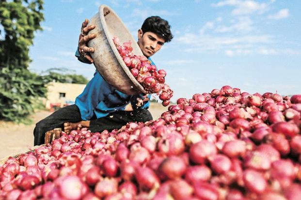 Despite a bumper crop in 2016-17, Maharashtra farmers are not getting the guaranteed minimum support price (MSP) for their farm produce. Photo: Bloomberg