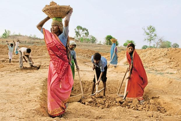 Launched in 2006, the rural employment programme has been a key source of livelihood for millions of rural households. Photo: Mint