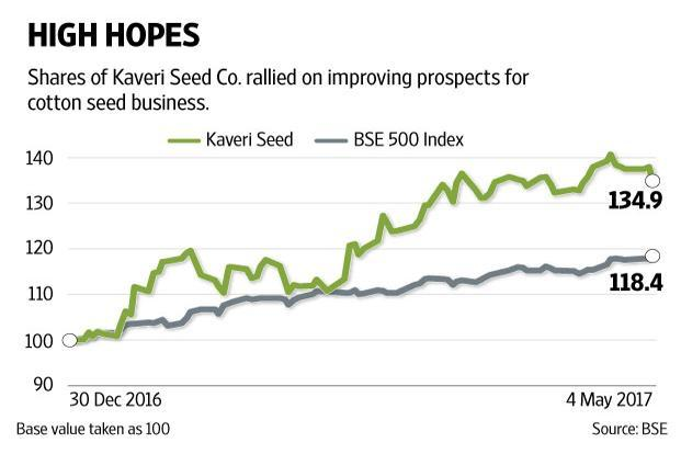 If cotton crop acreages rise as expected then the Kaveri Seed's sales growth may recover. Graphic: Naveen Kumar Saini/Web