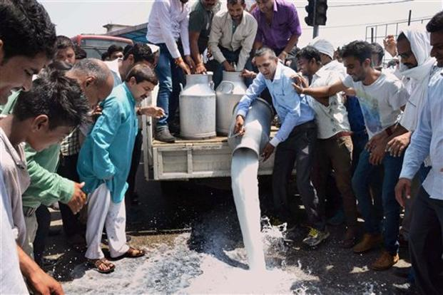 Farmers had emptied 5,000 litres of milk from a tanker at Raipuria in Jhabua district in Sunday. Photo: PTI