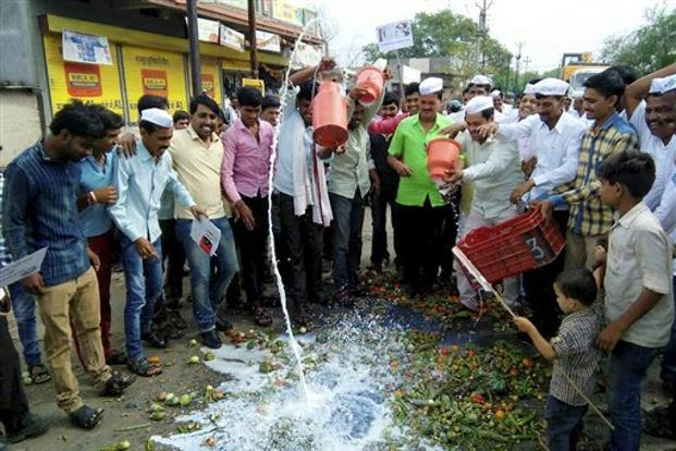 Farmers spill out milk during their state-wide protest over various demands at Pingli village in Parbhani, Maharashtra, on Sunday. Photo: PTI