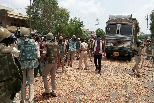 Farmers threw onions and other vegetables on the road during their protest in Shajapur district of Madhya Pradesh on Thursday. Photo: PTI