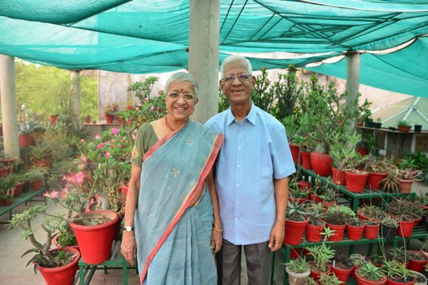 Mr. and Mrs. Athreya in their cacti garden.