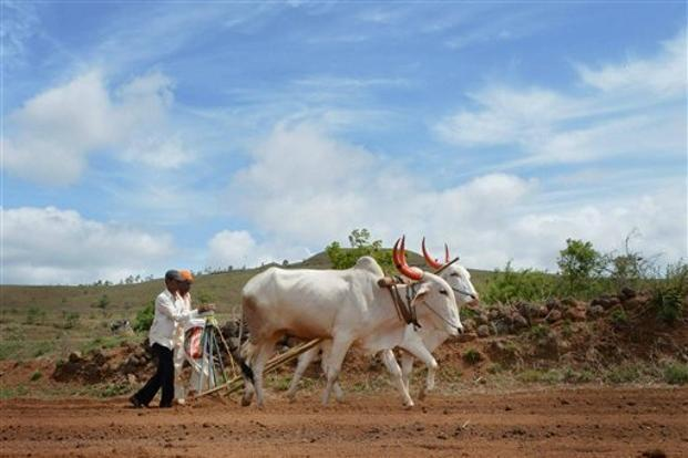 The Thakor community leader claimed that out of a total of 63 lakh farmers in Gujarat, around 40 lakh were under debt. Photo: PTI