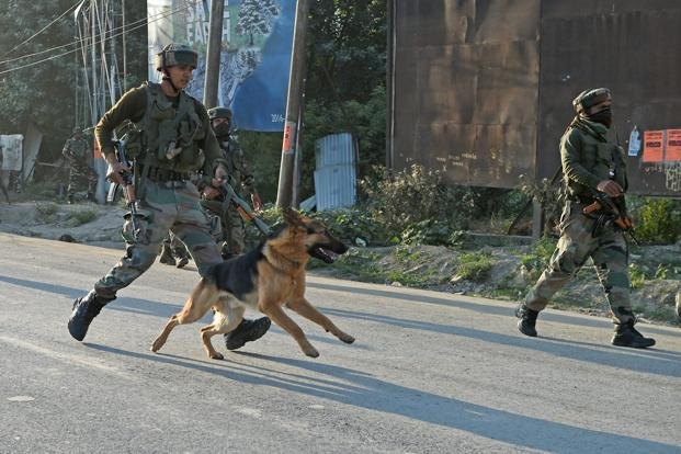 Encounter breaks out at Srinagar's DPS to flush out militants