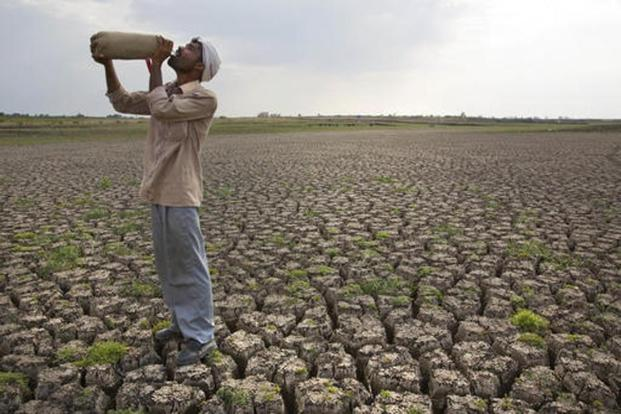 Several farmer suicides have been reported from Sehore, Hoshangabad, Raisen, Dhar, Neemuch, Chhatarpur, Sagar, Tikamgarh and Vidisha districts of Madhya Pradesh. Photo: AP