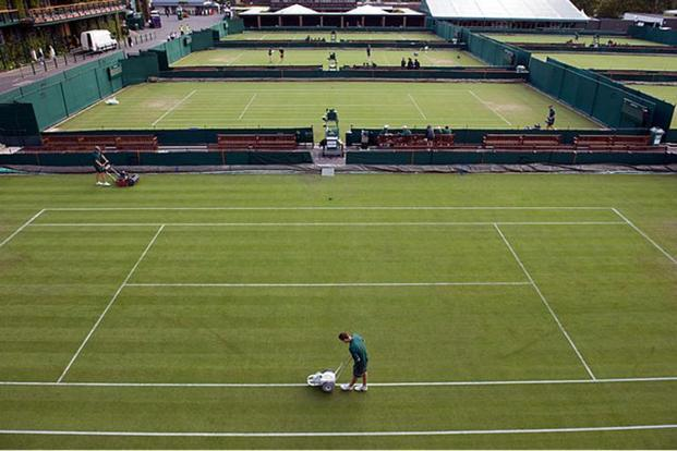 The grass courts at Wimbledon. Photo: Alamy