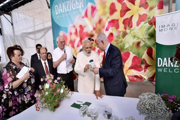 Prime Minister Narendra Modi with his Israeli counterpart Benjamin Netanyahu during his visit to the Danziger Flower Farm in Tel Aviv. Photo: PTI