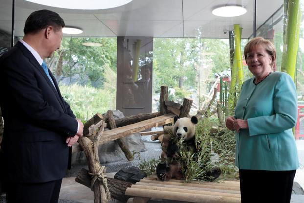 Xi Jinping and Angela Merkel called for expanded trade between China and Germany before the Group of 20 summit. Photo: AFP