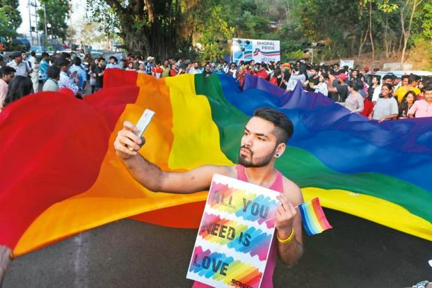 A supporter at a pride parade to mark the International Day against Homophobia and Transphobia in Bhopal this May. Photo: Hindustan Times
