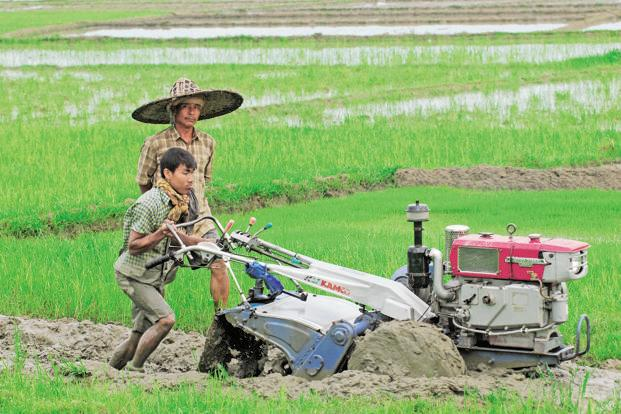 Sixty-three percent of the sons born in the 1980s to fathers in any of the three occupations—farmer, agricultural labourer or construction worker—continued to remain in the same occupation. Photo: Indranil Bhoumik/Mint