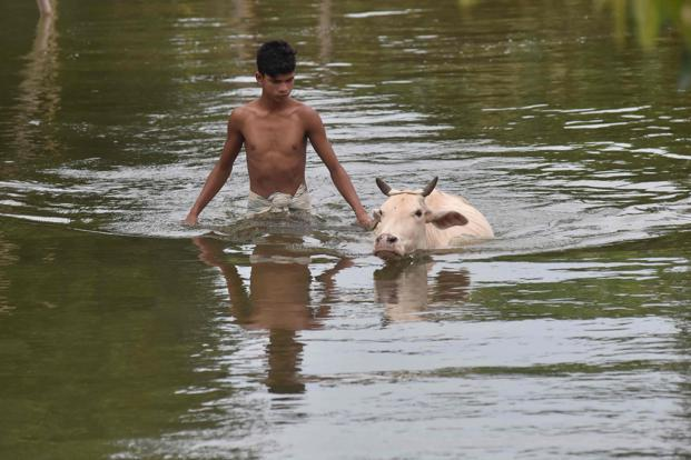 1,102 Assamese villages are underwater at present, said the Assam state disaster management authority. Photo: AFP