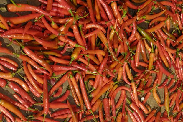 Last year's high red chilli prices prompted many Telangana farmers to switch to it. But that resulted in a bumper harvest, pushing prices down to Rs3,000-5,000 this year. Photo: Mint