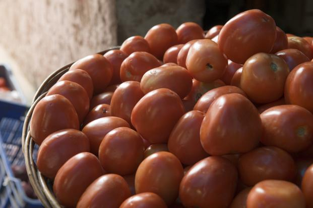 Tomato prices have shot up about four times since the beginning of June when they were being sold at about Rs25 per kg in the Delhi-National Capital Region market. Photo: Mint