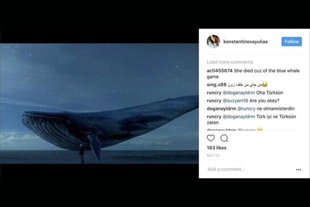 Yulia Konstantinova, a 15-year old from Russia, posted this picture of a 'Blue Whale' on her Instagram account, shortly before jumping to her death from a 14-storey apartment block.