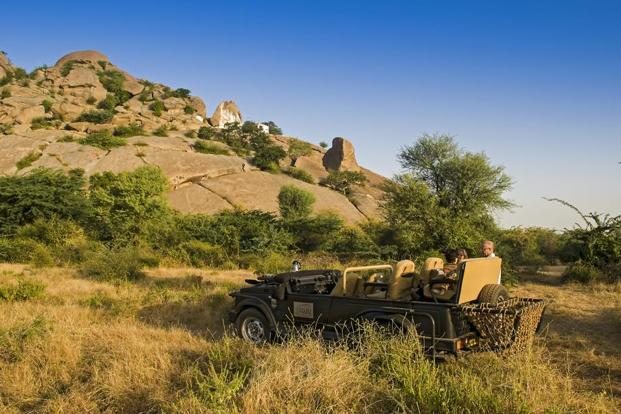The safari vehicle parked close to the leopard's den. Photo: Gustasp and Jeroo Irani