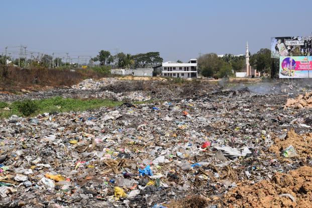 garbage intermittent rains contribute to dengue growth in bengaluru