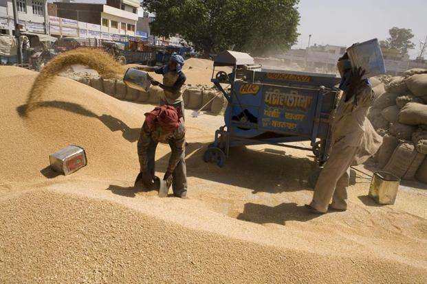 Projected fall in foodgrain production during the kharif season is likely due to uneven spread of southwest monsoon. Photo: Mint