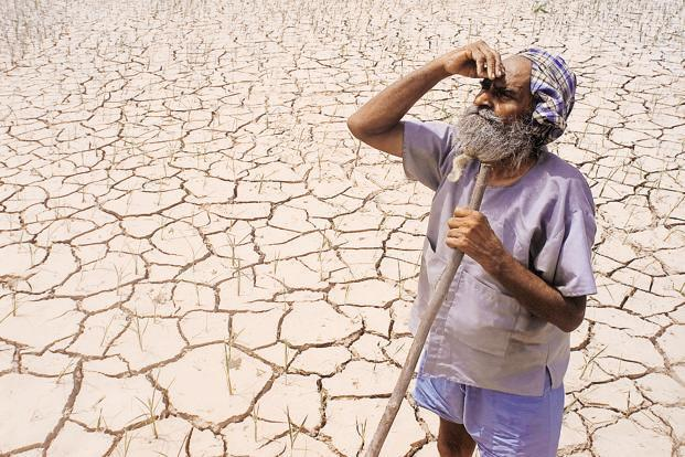 The central and eastern parts of India are the regions most sensitive to droughts, the study has revealed. Photo: Reuters