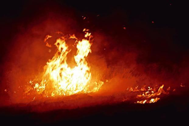 Image result for Fire breaks out in Delhi market, no casualties