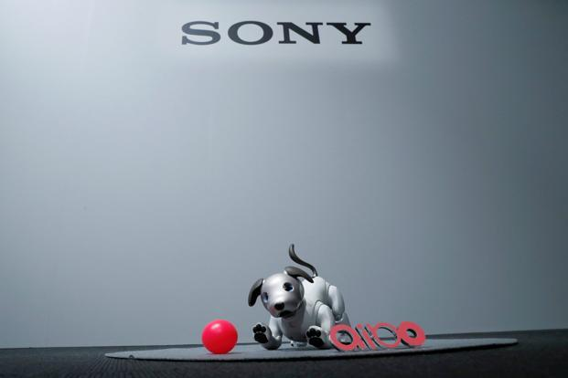 Sony's entertainment robot aibo is pictured at its demonstration in Tokyo on Wednesday. Photo: Reuters