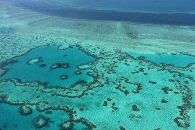 The Great Barrier Reef's traditional indigenous owners have a connection spanning 60,000 years, and its ecological functions are deeply embedded in their culture, says the Deloitte report. Photo: AFP