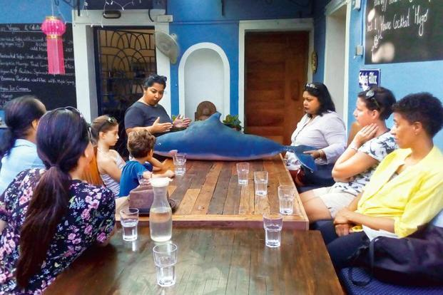 An educational briefing precedes Terra Conscious' ethical dolphin-watching tours. Courtesy: Terra Conscious