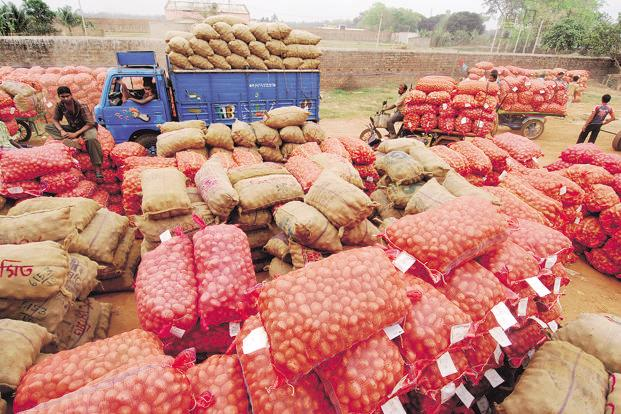 Under the 'market assurance scheme', states will be free to procure all crops from farmers for which minimum support prices are announced, except rice and wheat. Photo: Indranil Bhoumik/Mint