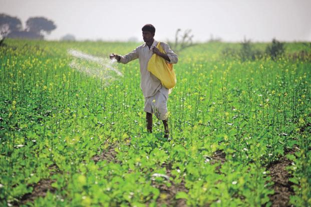 DBT IN FERTILIZERS : PROS AND CONS UPSC IAS