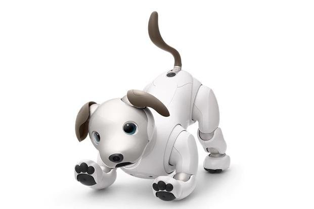 Sony Aibo is toy-sized robot which uses Artificial Intelligence to remember user commands and can sit, move like a real puppy and speak when asked.