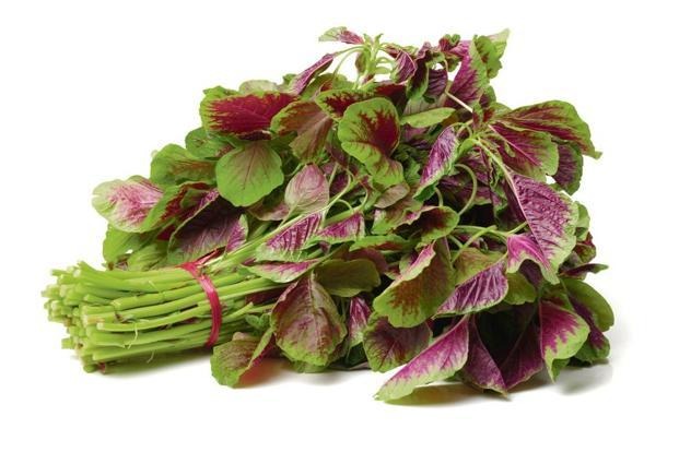 Amaranth leaves are rich in vitamins A and C, riboflavin, niacin, calcium, phosphorus and magnesium.