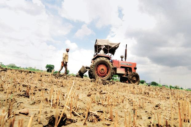 File photo. The input subsidy scheme will be implemented once the state government completes its ongoing survey to verify and update agricultural land records. Photo: Ramesh Pathania/Mint