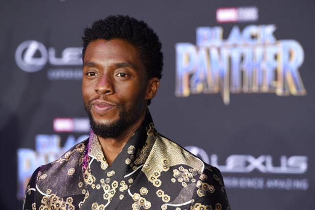 Black Panther, the Marvel superhero film from Walt Disney Co., which has been breaking sales records, collected $65.7 million at cinemas in the US and Canada. Photo: AP