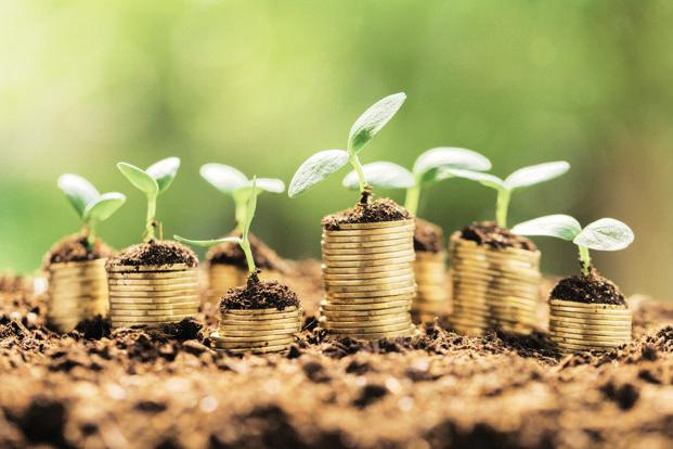 While the share of seed-stage deals by numbers was about 30%, its share of fund-raise was less than 10% of seed-stage plus early-growth stage deals. Photo: iStockphoto