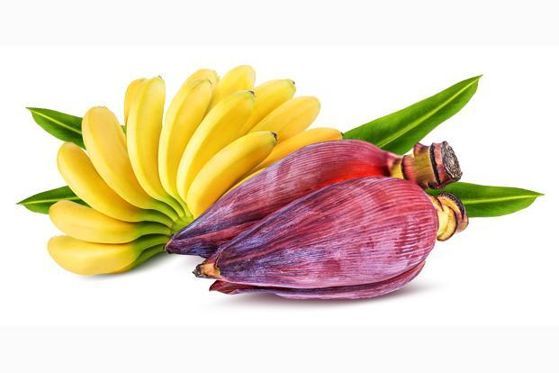 Banana flowers contain generous amounts of protein, calcium, fibre, vitamin E, and minerals like phosphorous, iron, zinc.