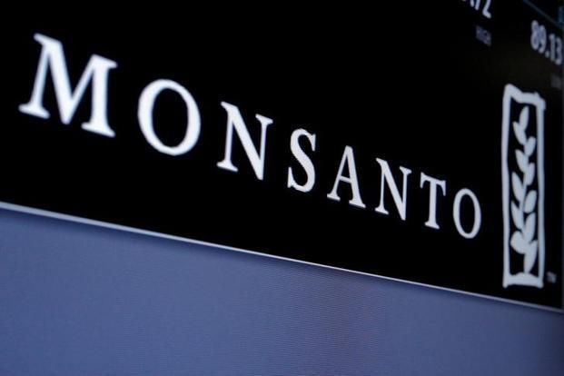 Monsanto's GM cotton seed technology dominate 90% of India's cotton acreage. Photo:  Reuters