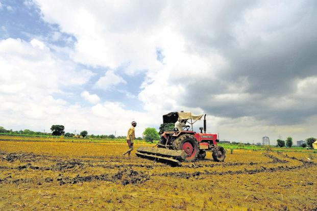 Cabinet hikes MSP for paddy by Rs 200 per quintal