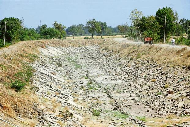 A file photo of a dry canal in Marathwada region of Maharashtra. Irrigation tends to be a major driver of water consumption, leading to diminished access to water for other uses.
