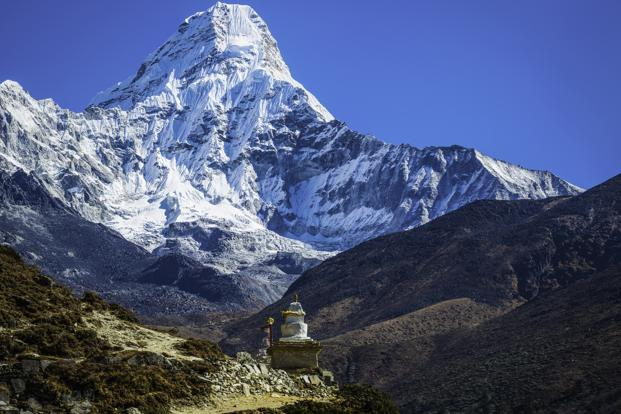 'Himalayan Viagra' under threat from climate change: researchers